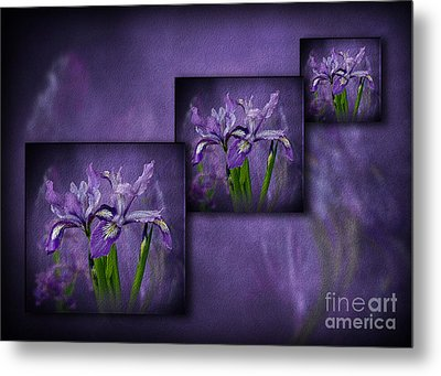 Iris Art Metal Print by Shirley Mangini