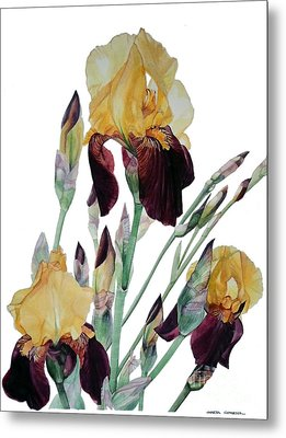 Iris Beethoven Romance In Fa Major Metal Print by Greta Corens