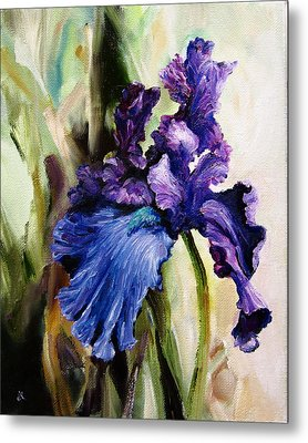Iris In Bloom Metal Print by Diane Kraudelt
