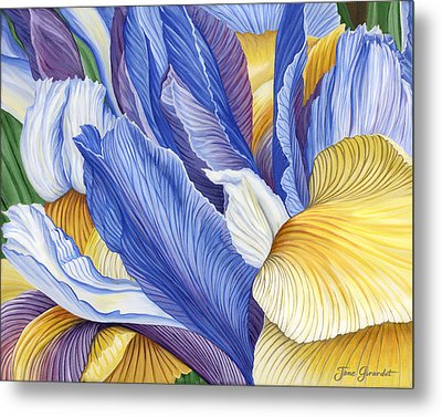 Iris Metal Print by Jane Girardot