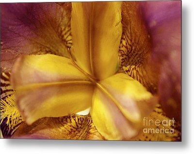 Iris Kaleidoscope I Metal Print