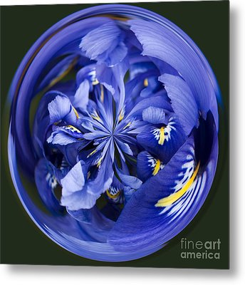 Iris Orb Metal Print by Anne Gilbert