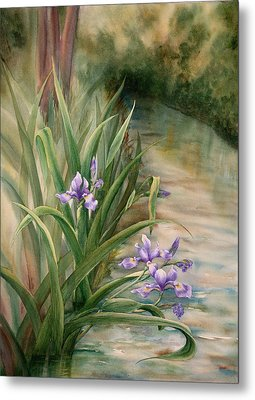 Iris Over The Inlet Metal Print