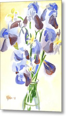 Irises Aglow Metal Print