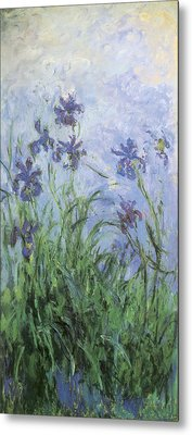 Irises Metal Print by Claude Monet