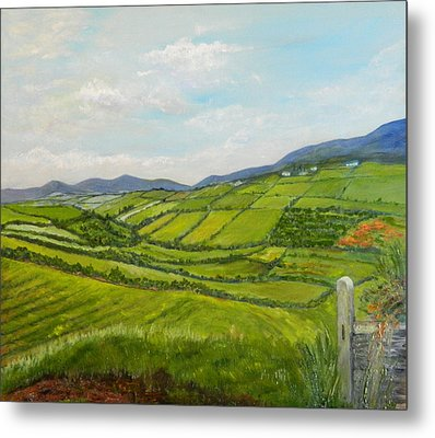 Irish Fields - Landscape Metal Print by Sandra Nardone