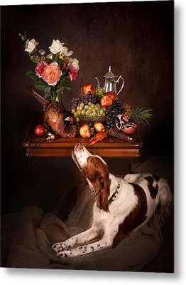 Irish Red And White Setter With Fruits... Metal Print