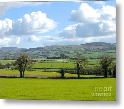 Irish Spring Metal Print by Suzanne Oesterling