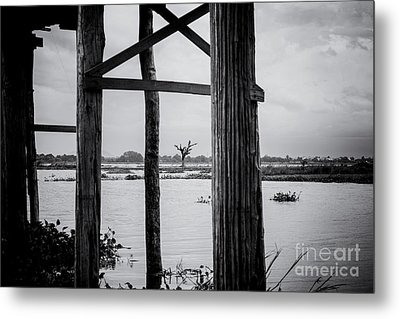 Irrawaddy River Tree Metal Print by Dean Harte