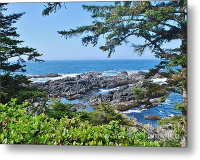 Island View Metal Print by William Wyckoff