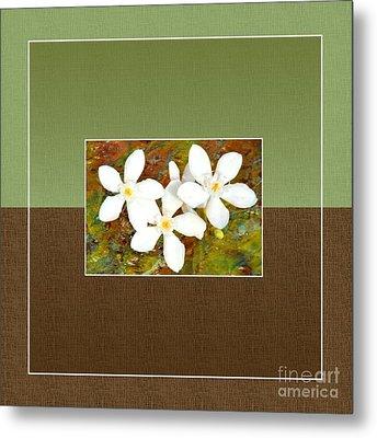 Islander-no1 Metal Print by Darla Wood