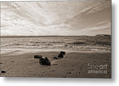 Metal Print featuring the photograph Isolation by Arlene Sundby