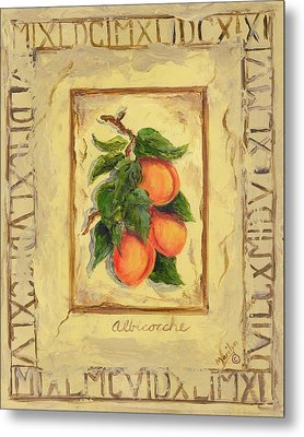 Italian Fruit Apricots Metal Print by Marilyn Dunlap