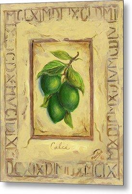 Italian Fruit Limes Metal Print by Marilyn Dunlap