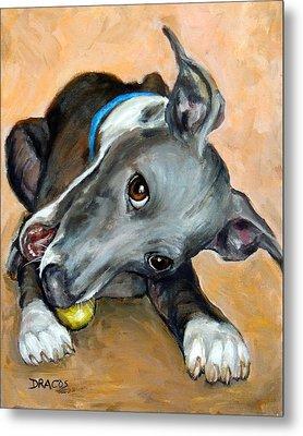 Italian Greyhound With Ball Metal Print by Dottie Dracos