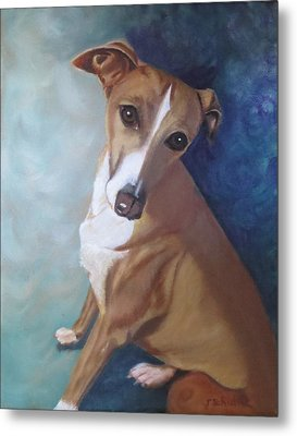 Metal Print featuring the painting Italian Greyhound by Sharon Schultz