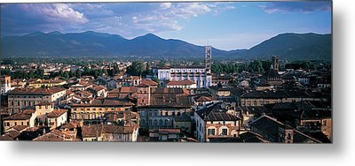 Italy, Tuscany, Lucca Metal Print by Panoramic Images