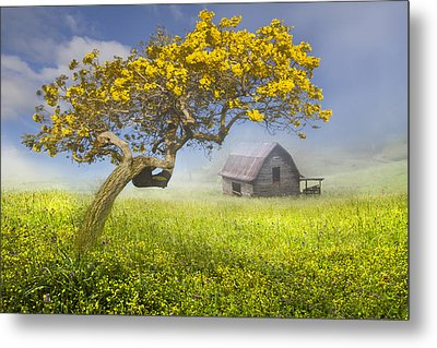 It's A Beautiful Day Metal Print by Debra and Dave Vanderlaan