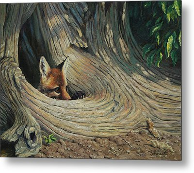 Fox - It's A Big World Out There Metal Print by Crista Forest