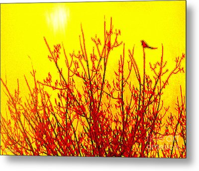 Metal Print featuring the digital art It's A Brand New Day by Cristophers Dream Artistry