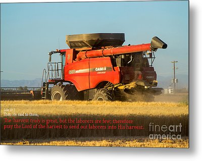 It's Harvest Time Metal Print by Beverly Guilliams