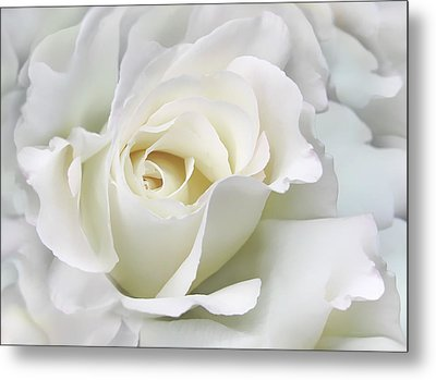 Ivory Rose Flower In The Clouds Metal Print by Jennie Marie Schell