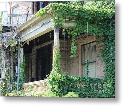 Metal Print featuring the photograph Ivy Take Over by Cynthia Snyder