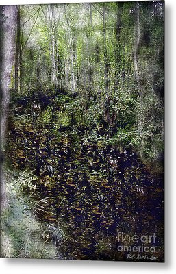 Jack Kell's Woods Metal Print by RC DeWinter