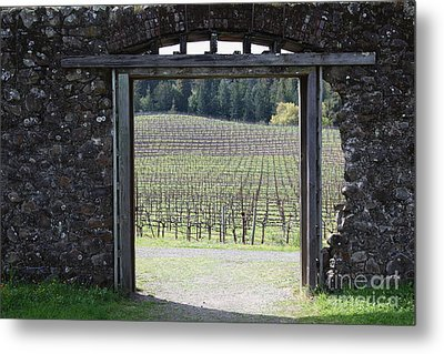 Jack London Ranch Winery Ruins 5d22132 Metal Print by Wingsdomain Art and Photography
