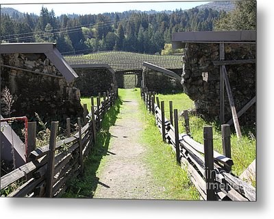 Jack London Ranch Winery Ruins 5d22180 Metal Print by Wingsdomain Art and Photography