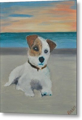 Jack On The Beach Metal Print by Kristen R Kennedy