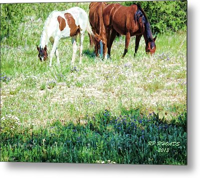 Metal Print featuring the digital art Jack Smokey And Camelot Painted by Robert Rhoads