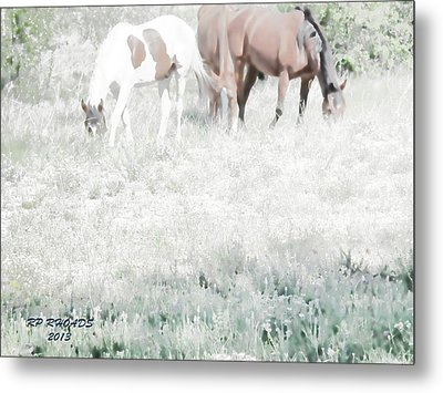 Metal Print featuring the digital art Jack Smokey And Camelot Texas Spring C by Robert Rhoads