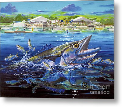 Jacksonville Kingfish Off0088 Metal Print by Carey Chen
