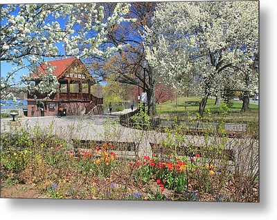 Jamaica Pond Boston In Spring Metal Print