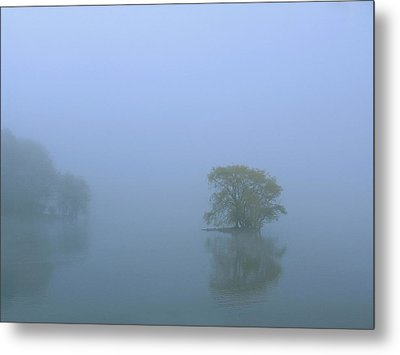 Jamaica Pond Metal Print by Juergen Roth