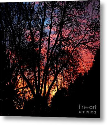 Metal Print featuring the photograph January Dawn by Luther Fine Art