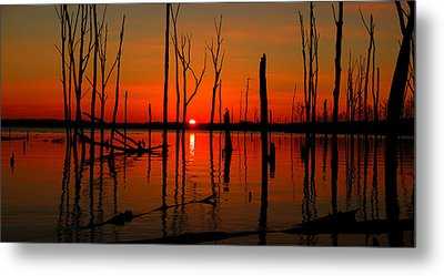January Sunrise Metal Print by Raymond Salani III