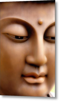 Japanese Great Buddha Face Metal Print by Sheila Haddad