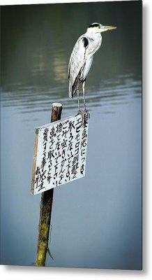 Japanese Waterfowl - Kyoto Japan Metal Print by Daniel Hagerman