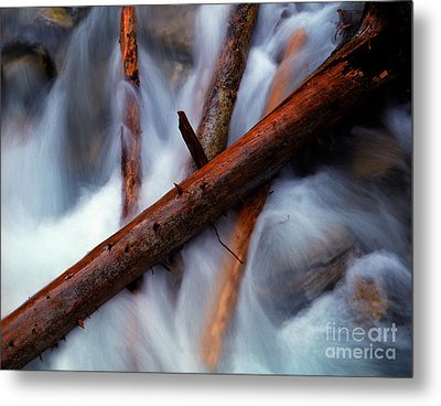 Jasper - Beauty Creek Logs Metal Print by Terry Elniski