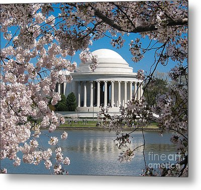 Metal Print featuring the photograph Jefferson Blossoms by Dale Nelson