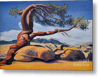 Jeffrey Tree Metal Print