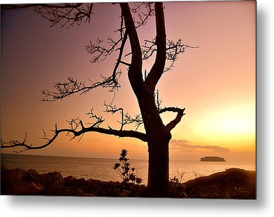 Jeju Sunset Metal Print by Yen