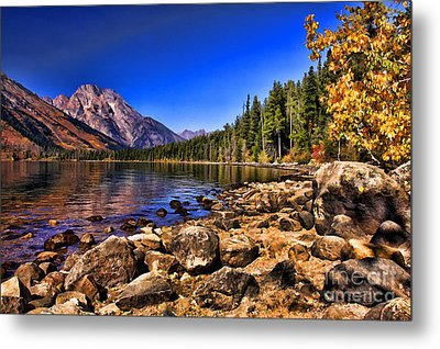 Metal Print featuring the photograph Jenny Lake by Clare VanderVeen