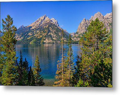 Jenny Lake Overlook Metal Print by Greg Norrell