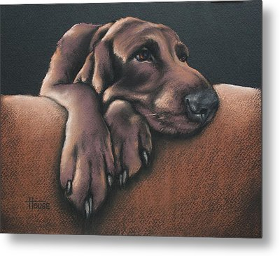 Metal Print featuring the pastel Jethro by Cynthia House