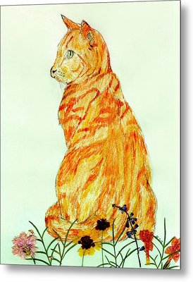 Metal Print featuring the drawing Jinj by Stephanie Grant