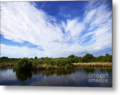 Joe Fox Fine Art - Flooded Grasslands With Mangrove Forest In The Background In The Florida Everglades Us Metal Print