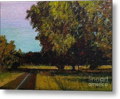 Jogging Trail At Two Rivers Park Metal Print by Amber Woodrum